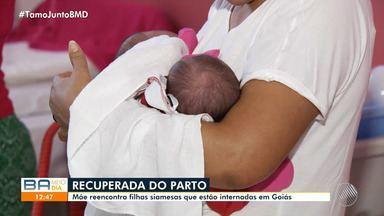 Mãe baiana reencontra gêmeas siamesas que estão internadas em Goiás - As meninas nasceram no mês de agosto deste ano e viajaram em busca de tratamento.