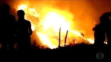 Em um ano, número de queimadas em Minas Gerais sobe 45% - De janeiro a agosto desse ano, já são quase 12 mil focos de incêndio em florestas e propriedades rurais.