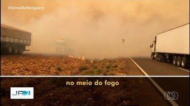 Governo do Goiás cria força-tarefa para investigar se queimadas no estado são criminosas - Proposta é prender quem atear fogo baseado na Lei da Segurança Nacional, a do terrorismo.