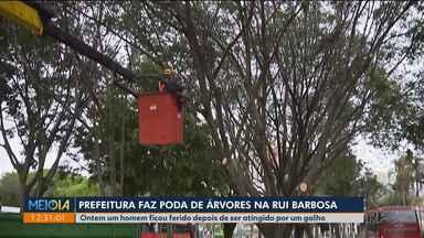 Prefeitura faz poda de árvores na Praça Rui Barbosa - Ontem um homem ficou ferido após ser atingido por galhos.