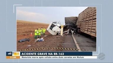 Motorista morre após colisão entre duas carretas - Motorista morre após colisão entre duas carretas