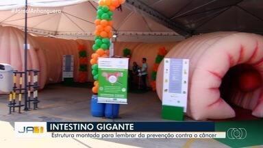 'Intestino' gigante chama a atenção em shopping de Goiânia - Estrutura faz parte de uma campanha para alertar sobre o câncer no intestino.