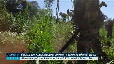 Operação Nova Aliança junta Brasil e Paraguai no combate ao tráfico de drogas - Só neste ano já foram erradicadas 2.929 toneladas de maconha.