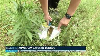 Número de casos de dengue no Paraná aumentou em 2019 - Já são 82 casos a mais que no ano passado inteiro. Em Ponta Grossa, sete casos da doença foram confirmados neste ano.
