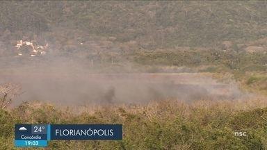 Giro de notícias: incêndio atinge vegetação no bairro Pântano do Sul, em Florianópolis - Giro de notícias: incêndio atinge vegetação no bairro Pântano do Sul, em Florianópolis