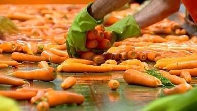 Piedade se destaca no beneficiamento de cenoura - Em Piedade (SP), a agricultura responde por 70% da economia do município e os pequenos produtores plantam um pouquinho de quase tudo. Mas tem muito produto que é colhido bem longe. É o caso das cenouras.