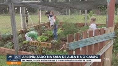 Escola ensina alunos cuidados com animais e com a horta no Oeste de SC - Escola ensina alunos cuidados com animais e com a horta no Oeste de SC