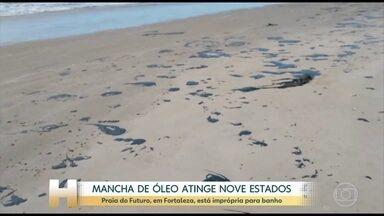 Mancha de óleo já foi vista nos nove estados do Nordeste - A praia mais famosa de Fortaleza, a Praia do Futuro, está imprópria para o banho. Ibama e Petrobras dizem que as manchas são de petróleo cru, mas a origem ainda é desconhecida.