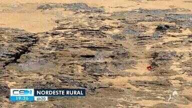 Veja os destaques do Nordeste Rural de amanhã (06) - Confira mais notícias em g1.globo.com/ce