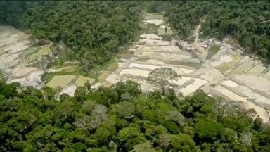 Estudo mostra que o número de invasões em terras indígenas aumentou - Uma das questões que vão ser abordadas no Sínodo, no Vaticano, será a situação dos índios que vivem na região amazônica.