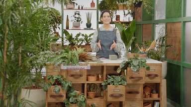 Uma floricultura na garagem