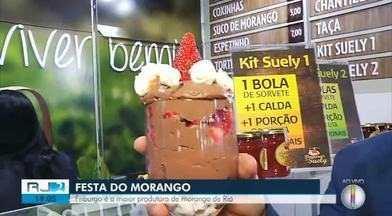 Festa do Morango começa em Nova Friburgo - Cidade é a maior produtora da fruta no Estado do Rio.