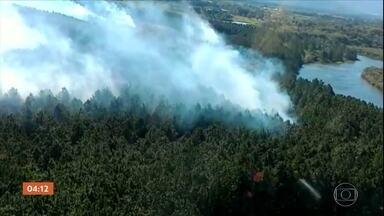 Incêndio atinge o Parque Estadual da Serra do Tabuleiro (SC) - Em Santa Catarina, mais um incêndio foi registrado no Parque Estadual da Serra do Tabuleiro, na região metropolitana de Florianópolis. Segundo a polícia, o ato foi criminoso.