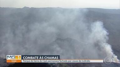Após incêndio, Parque Nacional da Serra do Cipó segue fechado - Foram destruídos 8 mil dos 33 mil hectares do parque.
