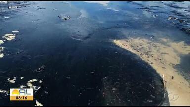 Órgãos ambientais investigam manchas de óleo no litoral nordestino - Bahia decretou estado de emergência por causa das manchas.