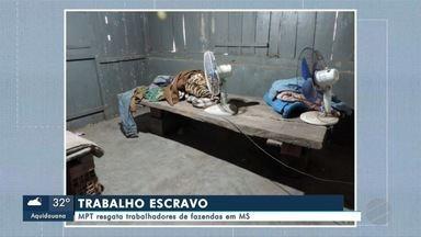 MPT resgata trabalhadores de fazendas em MS - Em Mato Grosso do Sul.
