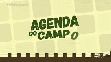 Agenda do Campo: veja os eventos e cursos realizados no Tocantins - Agenda do Campo: veja os eventos e cursos realizados no Tocantins