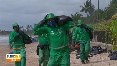 Óleo atinge praias de Ipojuca, no Litoral Sul - Cupe, Maracaípe, Muro Alto e Serrambi estão entre as localidades atingidas por petróleo neste sábado.