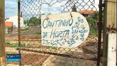 Hortas nos quintais de unidades de saúde em Guarapuava - Iniciativa tem trazido hábitos saudáveis para moradores. As hortas foram feitas nos postos de saúde do Morro Alto e Tancredo Neves.