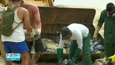 Manchas de óleo avançam e voluntários se mobilizam para retirar produto das praias - Saiba como doar equipamentos e fazer parte do trabalho de limpeza em Pernambuco
