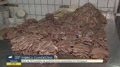 Mais de 20 toneladas de sardinha são apreendidas em uma fábrica clandestina em Mongaguá - Local não possuía higiene adequada e nem refrigeração.