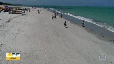 Voluntários trocam domingo de folga por limpeza de praias atingidas por óleo - Ônibus saiu da Praça do Arsenal com grupo que auxiliou no trabalho em Itamaracá.