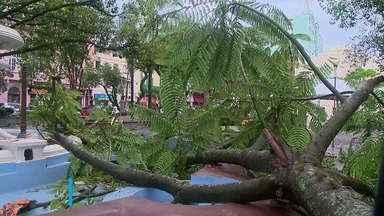 Temporal de ventos fortes causa estragos na Região Central e da Fronteira - Quantidade elevada de chuva encharca o solo e preocupa moradores.