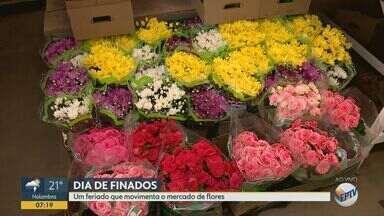 Dia de Finados movimenta comércio de flores em Campinas - Os comerciantes esperam um crescimento de cerca de 5% no volume de vendas, em relação ao mesmo período no ano passado.