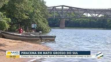 Começou hoje a proibição de pesca nos rios Paraná, Aporé e Paranaíba - Nos demais começa no dia 5.