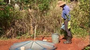 Saiba como fazer uma fossa para a produção de adubo orgânico - Técnica desenvolvida pela Embrapa oferece mais produtividade e evita a poluição nos arredores de pequenas propriedades.