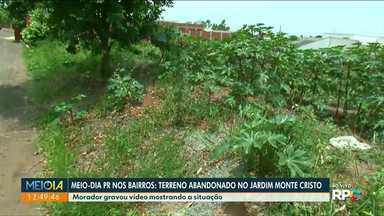 Moradores de Paranavaí relatam perigos de terrenos baldios - Telespectadora relata ter encontrado escorpiões em casa.