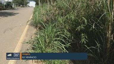 Motoristas de São José do Rio Pardo reclamam de crateras e lama às margens de estrada - A prefeitura informou que já fez melhorias, mas precisou interromper serviço porque são necessárias intervenções em áreas particulares.