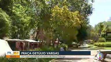 Professores de universidade vão analisar condições das árvores em praça de Nova Friburgo - Praça Getúlio Vargas é um importante ponto turístico da cidade.