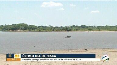Temporada de pesca 2019 termina nessa segunda-feira - Piracema começa nessa terça-feira e segue até o dia 28 de fevereiro de 2020