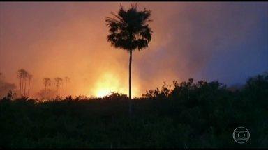 No Pantanal, falta de chuva faz fogo se espalhar pela região - O incêndio que começou entre as cidades de Miranda e Corumbá já se alastrou e chegou até um parque estadual.