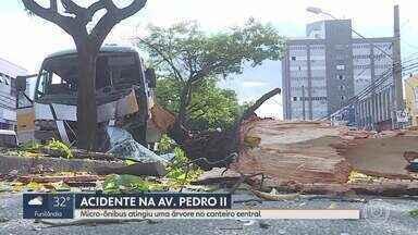Micro-ônibus atingiu uma árvore no canteiro central da av. Pedro II - Motorista foi encaminhada para o Hospital Belo Horizonte.