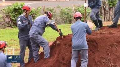 Corpo de Bombeiros em Ituiutaba treina oficiais para salvamento terrestre - O foco principal é o resgate de vítima de desabamento e soterramento. No total participam 36 militares.