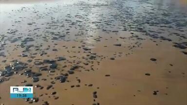 Inea capacita técnicos em São João da Barra caso óleo que atinge o Nordeste chegue ao Rio - Ação aconteceu nesta segunda na Praia do Açu.