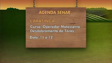 """Confira os cursos da Agenda Senar em parceria com os sindicatos rurais - O curso de """"Operador de Motosserra Desdobramento de Toras"""" é oferecido em Caratinga, entre 11 e 12 de novembro."""