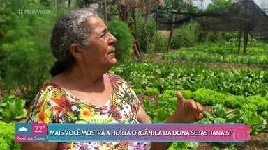 'Mais Você' visita a horta orgânica de Dona Sebastiana - Agricultora foi beneficiada por um projeto da prefeitura de São Paulo, que cedeu pequenos terrenos para plantações no bairro de São Matheus