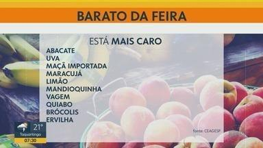 Confira preços de frutas, verduras e legumes nas feiras de Ribeirão Preto - Banana prata, abobrinha, pimentão, pepino e alface estão mais em conta.
