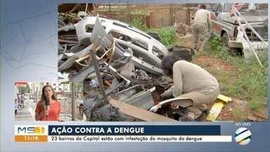 Centro da Capital recebe reforço no combate ao mosquito da dengue - Levantamento mostra que 23 bairros da Capital estão com alta infestação do mosquito