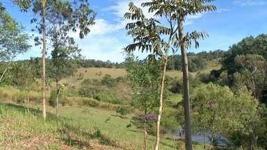 ONG Corredor Ecológico coordena reconstituição ambiental no Vale do Paraíba - A ONG Corredor Ecológico atua em São Paulo, recuperando vegetações degradadas do estado. Um trabalho que une proprietários de terra, prefeituras e empresas. A reportegem é da TV Diário, parceira da TV Globo em Mogi das Cruzes.