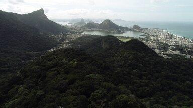 Conheça a Trilha Transcarioca - Repórter Renato Cunha visitou quatro pontos da trilha que cruza a cidade do Rio de Janeiro.