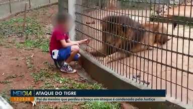 Pai de menino que teve o braço arrancado por tigre é condenado pela Justiça - A pena de 3 anos de reclusão vai ser convertida em prestação de serviços e restrição de direitos; ainda cabe recurso.