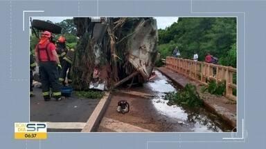 Acidente entre ônibus e moto deixam cinco mortos em Votuporanga - As duas mulheres que estavam na moto morreram na hora; três pessoas que estavam no ônibus também não resistiram