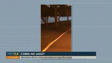 Moradora diz ter visto uma cobra no Lago Municipal de Cascavel - O médico veterinário da secretaria de Meio Ambiente, diz que se trata de uma capivara.