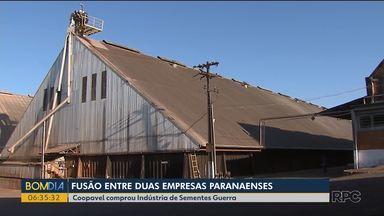 Coopavel compra empresa de sementes que fica no sudoeste do Paraná - Presidente da cooperativa com sede em Cascavel acredita que fusão das empresas vai gerar 600 empregos, diretos e indiretos.