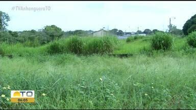 Avenida sem asfalto é tomada por mato alto e lixo em Araguaína - Avenida sem asfalto é tomada por mato alto e lixo em Araguaína
