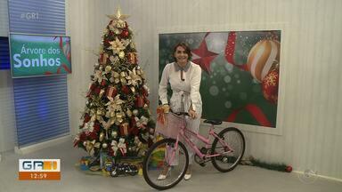 Campanha 'Árvore dos Sonhos' vai presentear crianças carentes - Os presentes serão recebidos até o dia 20 de dezembro nos pontos de arrecadação.